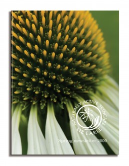 Liz Earle newsletter cover spring 09