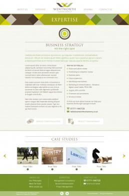 Wentworth Consultancy website design Expertise